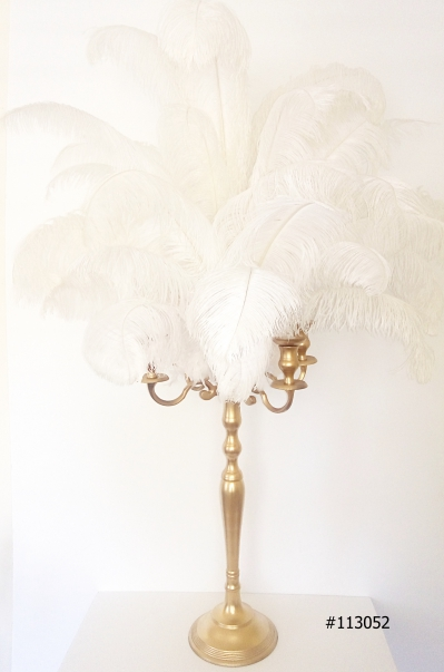 Gold Candelabra with white Ostrich Feathers 55 inch tall # 113052