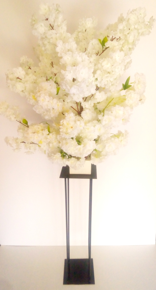 Balck Harlow Stand with white cherry blossoms over 5 foot tall