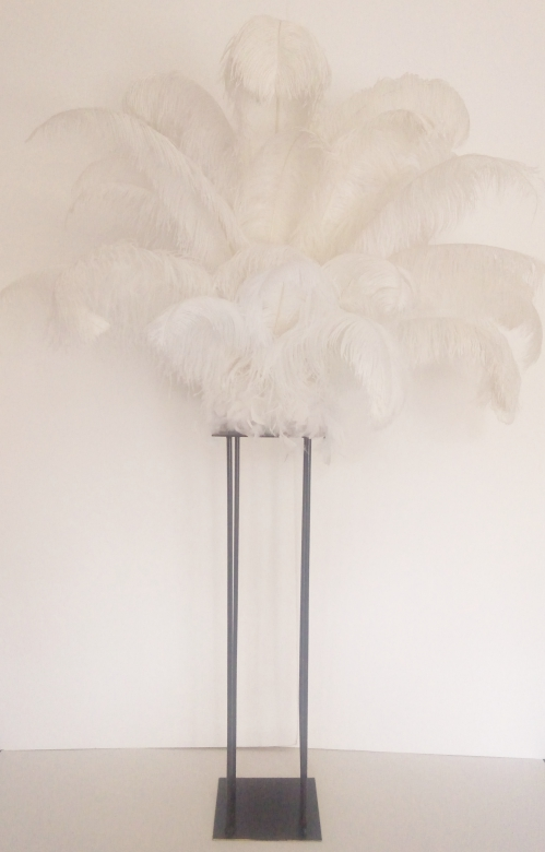 Black harlow with white Ostrich Feathers height over 5 foot tall