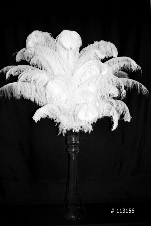 Ostrich Feather Centerpiece white on a tall glass vase trumpet style # 113156