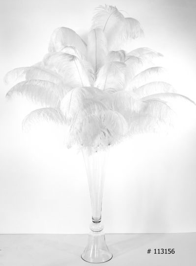 Ostrich Feather Centerpiece with tall glass vase 55 inch tall # 113156